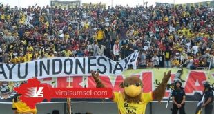 Suporter Sriwijaya FC, Sriwijaya Mania selalu setia mendukung Sriwijaya FC. FOTO :VIRALSUMSEL.COM
