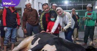 RM Taufik Husni MA, SH Ketua YLKI Sumsel bersama keluarga saksikan penyembelihan qurban di Masjid Agung Palembang. FOTO : ARRA/VIRALSUMSEL.COM