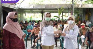 Amaliah Sobli S.KG MBA Anggota DPD RI Dapil Sumsel salurkan bantuan bibit buah-buahan pada petani Ogan Ilir. FOTO :VIRALSUMSEL.COM